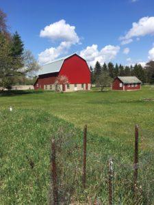 Mutter's Farm